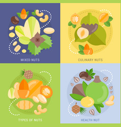 set flat banners about nuts vector image