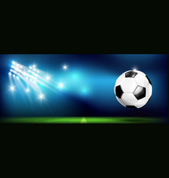 soccer ball with stadium and lighting 002 vector image