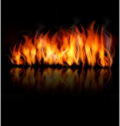 Fire on black background vector image