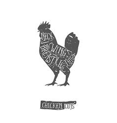 Vintage typographic chicken cuts diagram vector image vector image