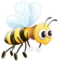 A bee vector