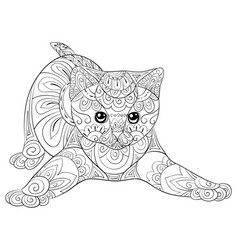 adult coloring bookpage a cute cat image for vector image