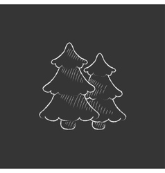 Pine trees Drawn in chalk icon vector