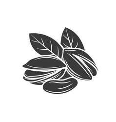 Pistachio nuts glyph icon vector