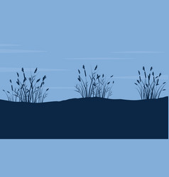silhouette of coarse grass on hill landscape vector image