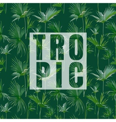 Tropical Palm Leaves Exotic Background Banner vector