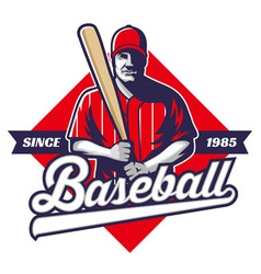baseball player hold a bat vector image vector image