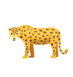 jaguar cat panther cartoon vector image