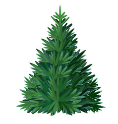 cartoon christmas tree isolated on white vector image
