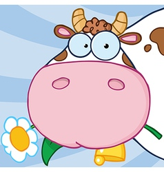 Cow Head Carrying A Flower In Its Mouth vector