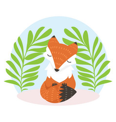 cute fox cartoon fox flat style vector image