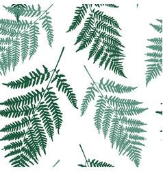 fern leaf seamless pattern background vector image