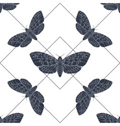 Hand drawn hawk moth seamless pattern vector image