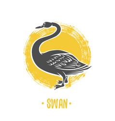 Heraldic shields with swan vector