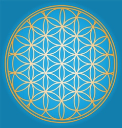 Sacred Geometry flower of life vector image vector image
