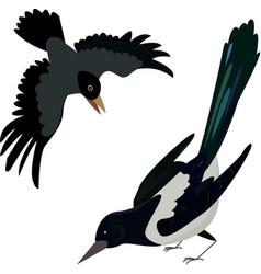 flying crow circuit birds raven rook magpie vector image