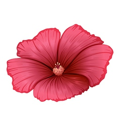 A red flower vector