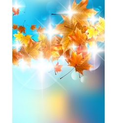 Autumn background with colorful leaves on blue vector image