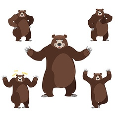 Bear set on white background Grizzly various poses vector image