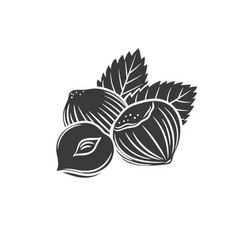 hazelnut glyph icon vector image