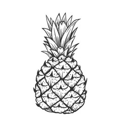 pineapple in engraving style design element for vector image