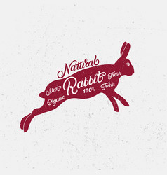 rabbit silhouette and hand written lettering vector image