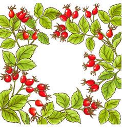wild rose frame vector image