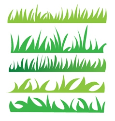 Set of green grass vector image