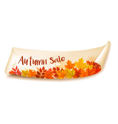 autumn sale banner with colorful leaves layered vector image
