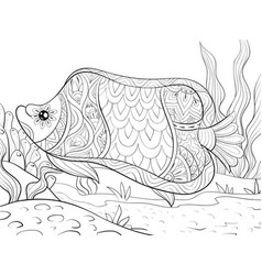 adult coloring bookpage a cute fish on the vector image