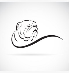 Bulldog head design on white background pet vector