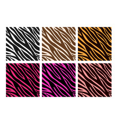colorful zebra print vector image