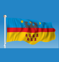 flag of transylvania vector image