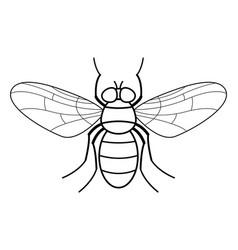 Fly contour vector