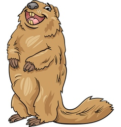 Marmot animal cartoon vector