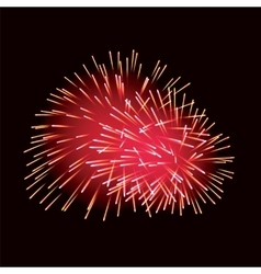 Red fireworks on dark background vector image