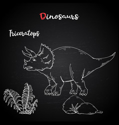 triceratops with plant and stone on chalk vector image
