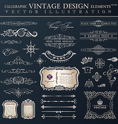 set vintage Calligraphic design elements and page vector image vector image