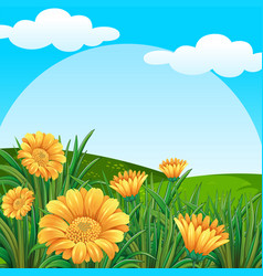 background scene with yellow flowers in field vector image