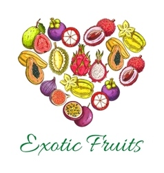 Exotic fresh fruits poster in heart shape vector image vector image