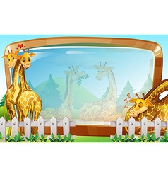 Frame template with giraffe in park vector