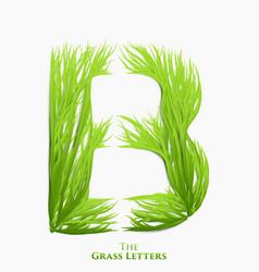 Letter b juicy grass alphabet green b vector