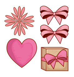 set present gift with ribbon bows and flower vector image