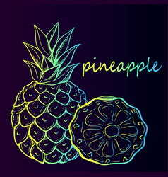 Tropical pineapple fruit vector
