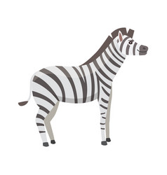 happy cut cartoon zebra isolated vector image