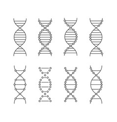 Black linear dna icons set vector