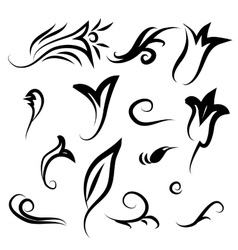 Decor items flowers leaves and curls vector