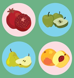 fruits4 vector image