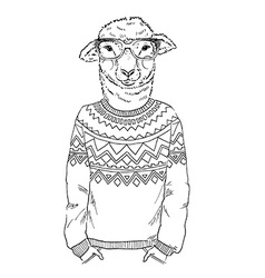 Lambl dressed up in jacquard pullover vector