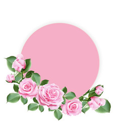 pink roses decorated on pink round paper vector image